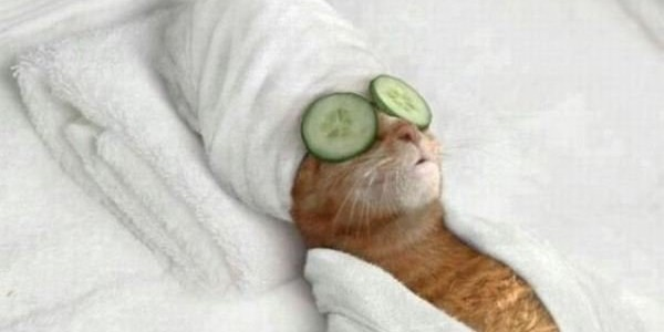 Too stressed relaxation methods you can do anytime anywhere